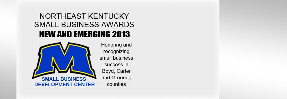 New and emerging award